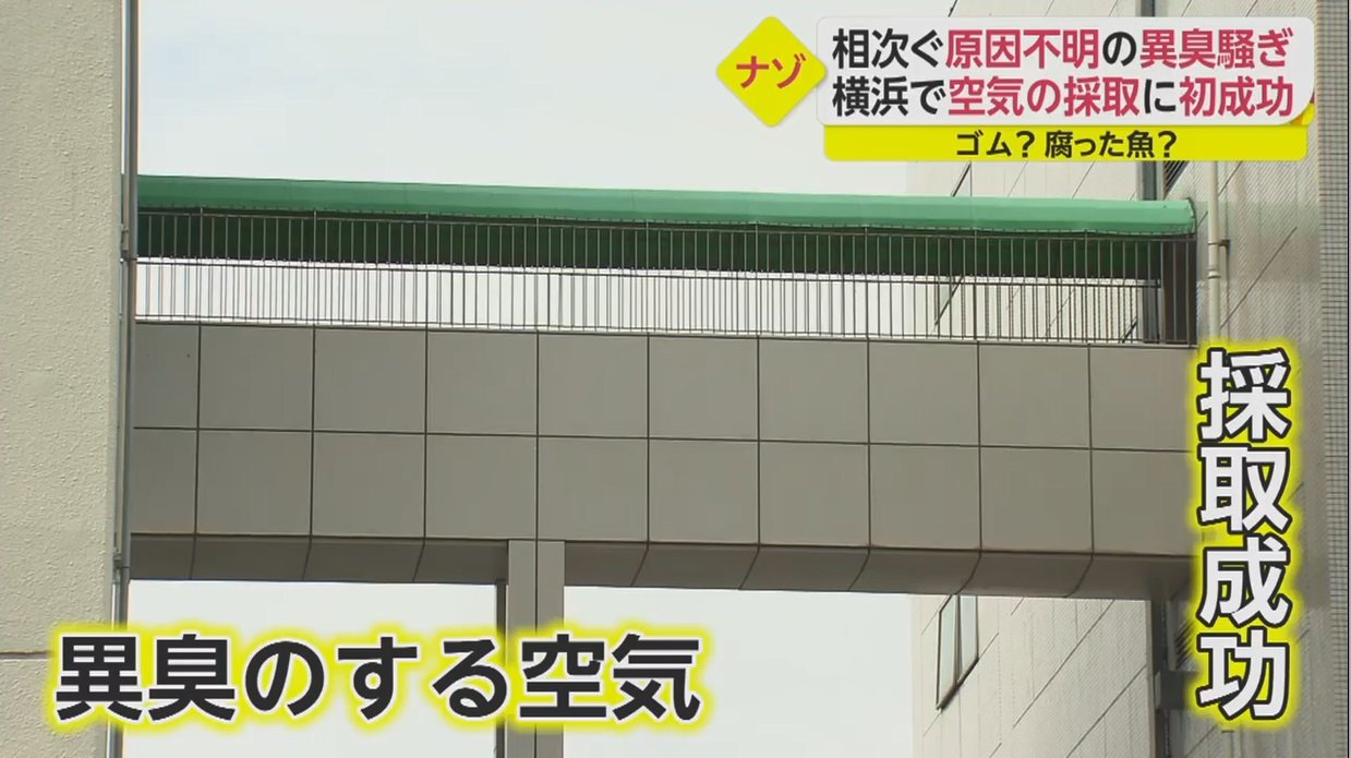 異臭 騒ぎ 横須賀